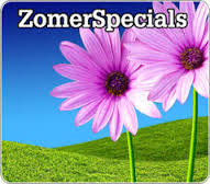 Zomer Specials Hotelspecials 3=2